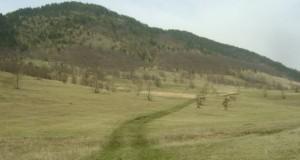 Javni oglas za davanje u zakup poljoprivrednog zemljišta u svojini opštine Rudo putem pribavljanja pismenih ponuda