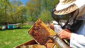 Obavještenje za pčelare