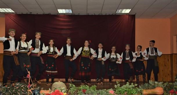 Руђански фолклорци у Банату
