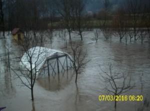 poplav